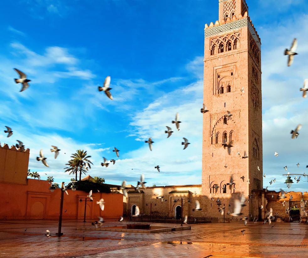 Agence de Transport Touristique à Marrakech